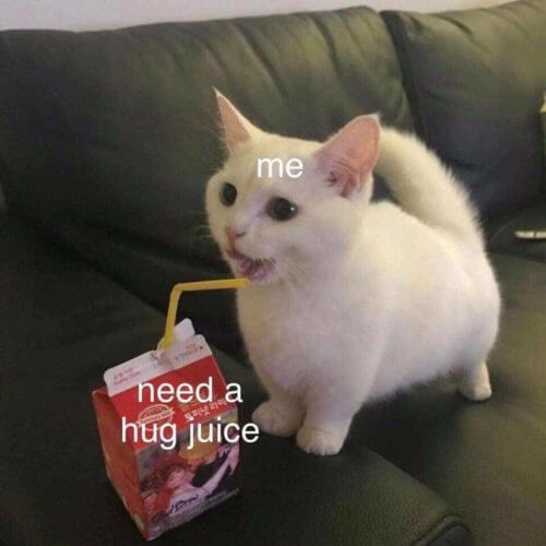 cat drinking juice box need a hug juice supportiv comforting quotes