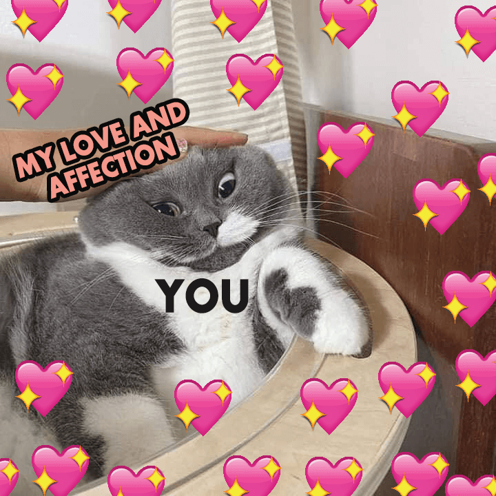 my-love-and-affection-you-wholesome-meme-supportiv