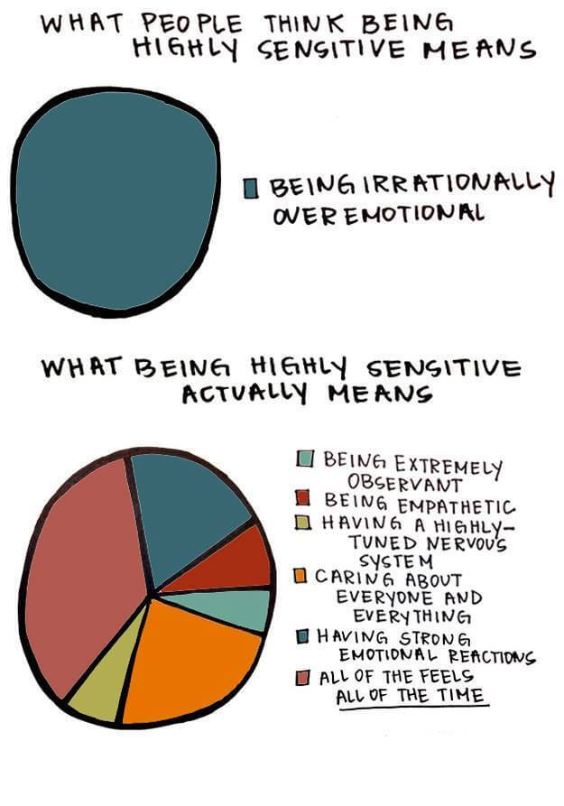 what-people-think-being-highly-sensitive-means-vs-what-being-highly-sensitive-actually-means-supportiv-hsperson-pie-chart